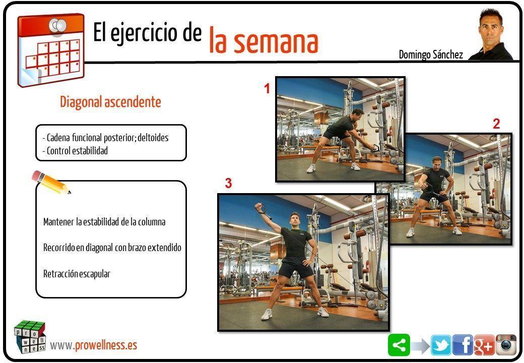 ejercicio semana 31