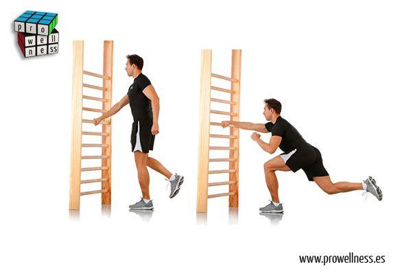 espaldera squat 03