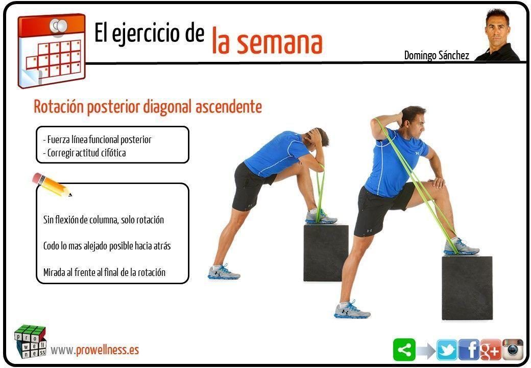 ejercicio semana 16