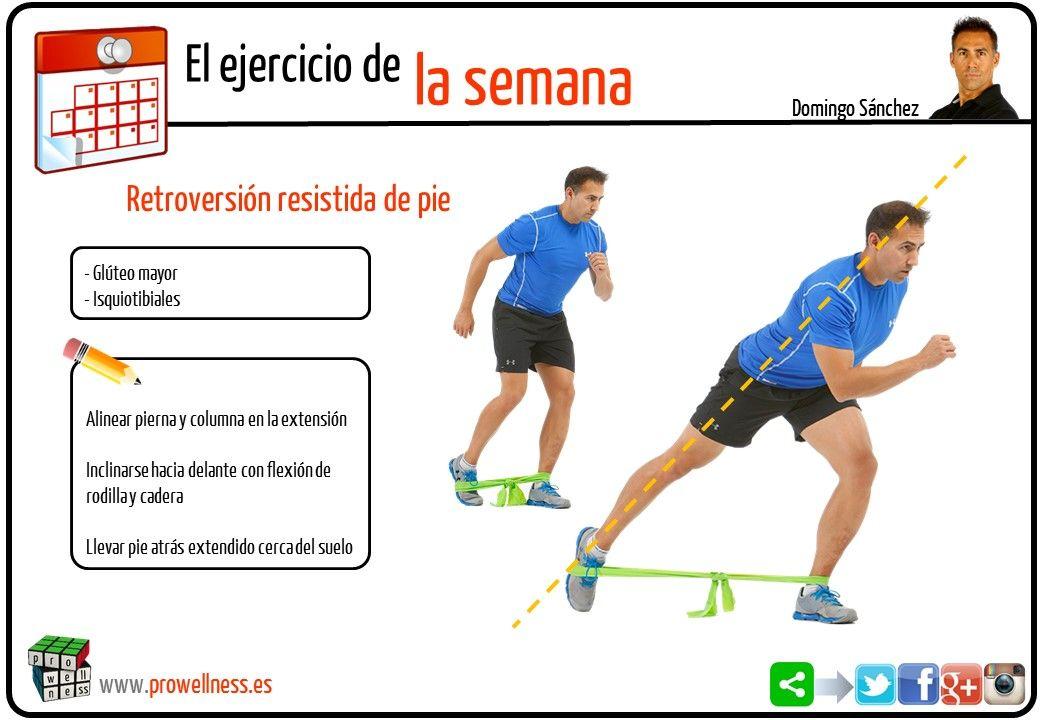 ejercicio semana 21
