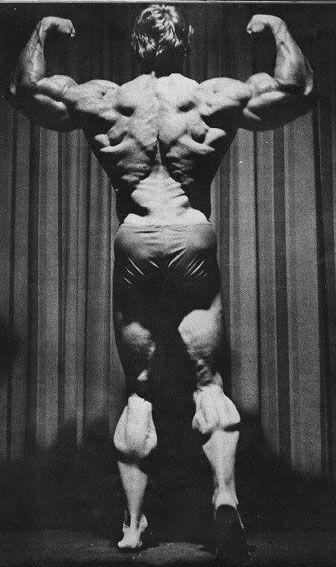 Arnold-Back-Bis