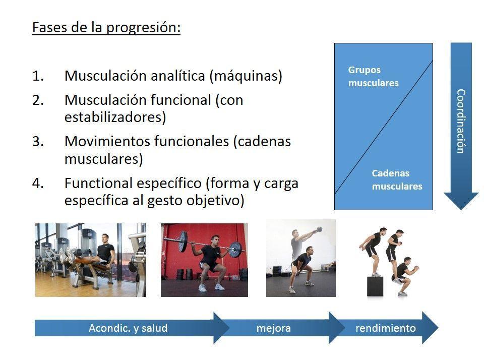 Fases fuerza funcional