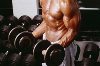 Renovar la musculación