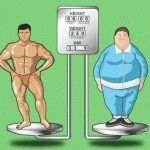 Cómo hacer perder peso… bien